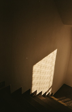 photography light vintage retro sunny Sunlight analog stair stairway analog photography