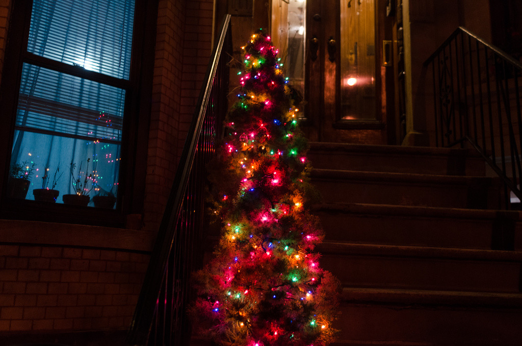 Post-Holiday Cheer  Park Slope, Brooklyn