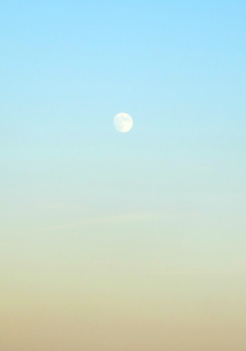 alden-and-a-camera:  moon out bright and early