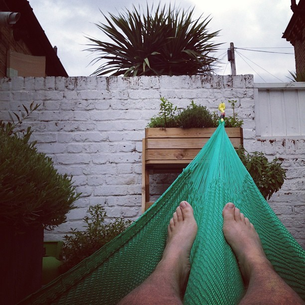 One thing I did discover in Mexico is my love for a hammock. Had to buy one and of course it had to be green with gold rope. #CmonAussie!! Not quite the beach, but there is a palm tree next door to pretend.