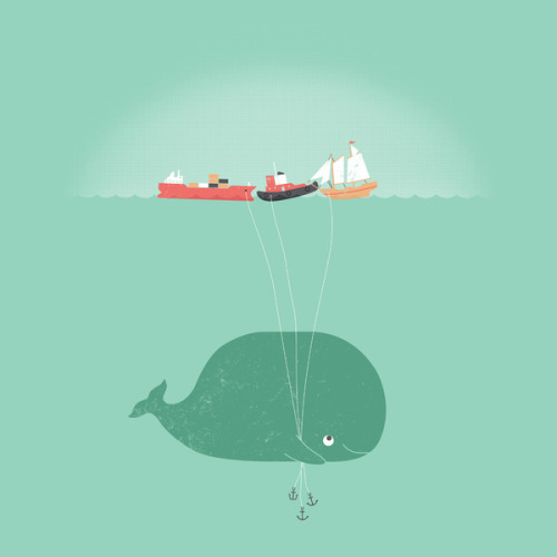 whale balloons by william mcdonald