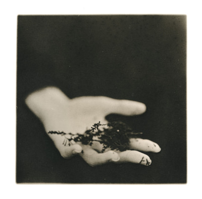 liquidnight:  Ellen Rogers January, 2013  Nice hands part 1
