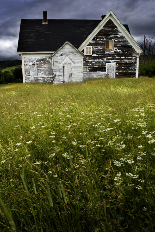 evocativesynthesis:  Abandoned Home in Nova Scotia