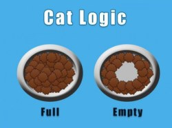 9gag:  Cat Logic