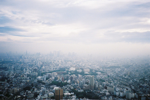 ileftmyheartintokyo:  untitled by Naoharu on Flickr.