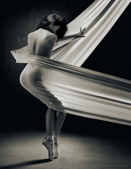danishprinciple:  Vadim Stein