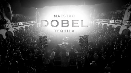 Rock the night with Maestro Dobel.