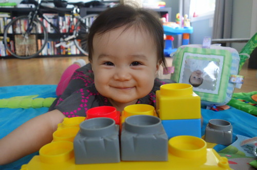 Day 225. Eva's playing with a set of blocks we got at the Great Brookland Yard Sale, an annual event in our Washington, D.C. neighborhood. The family, including Opa, took advantage of the great weather Sunday to check out all the sales. Tuesday was Opa's last day with us and Eva impressed him by trying to crawl!