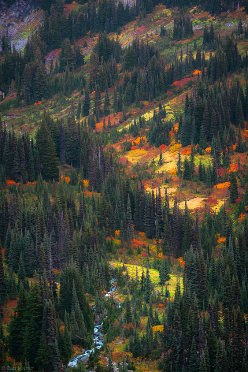 expressions-of-nature:  By: Ben Marar
