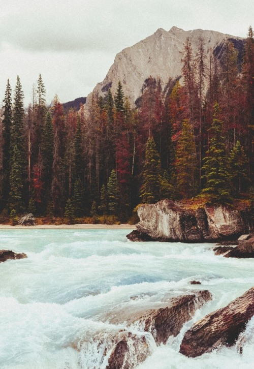 quick waters. | by Natalie | on Tumblr.