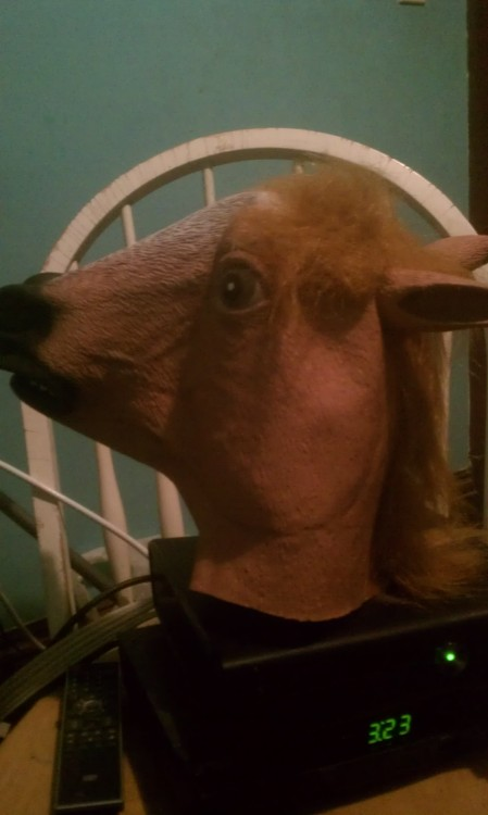 I just got a horse mask  I am very responsible with money