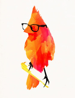 "city-of-vultures:  ""Punk bird"" Robert Farkas  (Hungary) via Curioos"