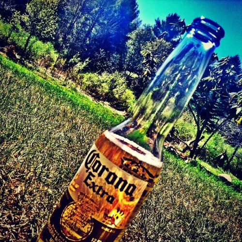 Cinco De Drinko #occupyabarstool #happyhour #lushlife #cincodemayo #corona