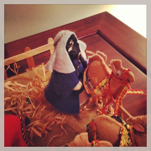 Meanwhile… behind the manger #Nativity