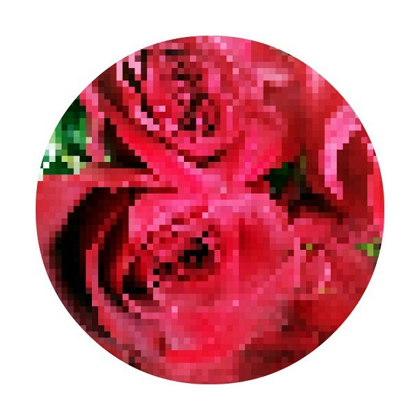 Pixel Roses. #flowers #floral #pixels #8bit #games #gamers #cute #kawaii #roses #red #green #colorful #fashion #pattern #print #decor #apps #photoeditor #apps #androids #instahooked #pretty #romance #couples #instafamous #instamatic #effects #instadaily