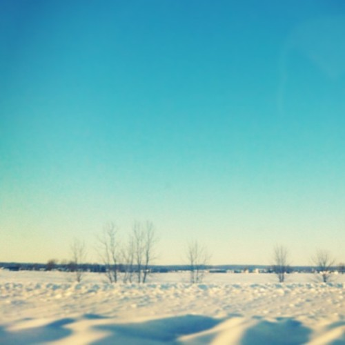 On the #road heading to #quebec! #ontheroad #driving #winter #snow #cold #bluesky #sky #landscape #nature #minimal