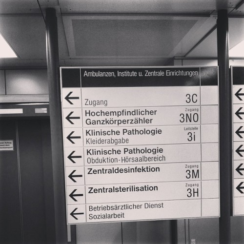 #ganzkörperzähler #whereto #reality #check #life #signs #german #text #sickness #direction #follow