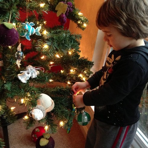 Little Ryan helps us get into the holiday season. My thoughts with those who can't celebrate today because of the senseless violence yesterday. (at Ocean Colony)