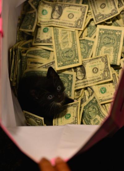 mochiandmagnolias:  thekushtribe:  JOIN THETRIBE  Happy pay day!