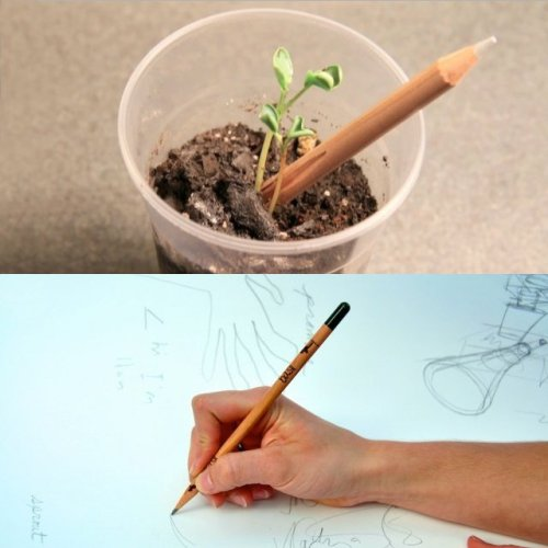 "the-august:  Water-Activated Sprout Pencil ""What if instead of throwing your pencil stubs away you could plant them and have them grow into something delicious, beautiful, and fun? What if pencils could grow? Sprout is a high quality cedar pencil with a water-activated seed capsule at the tip. When the seed capsule is exposed to moisture it begins to degrade, releasing the seed within Sprout and starting its germination. You can leave the pencil in the soil as a helpful planting label, or pull it out. You can plant Sprout wherever you like, though we recommend an area that gets plenty of sunlight."" via thefancy"