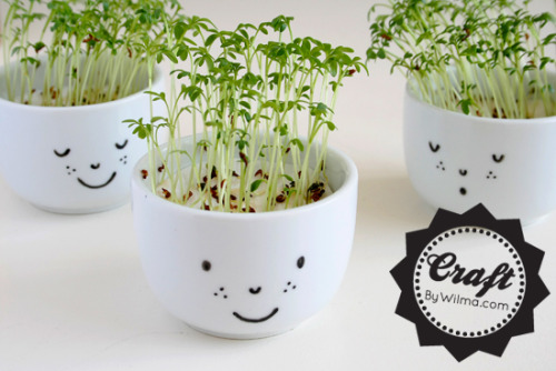 dreamalittlebiggerblog:  I love the little faces on these cress cups by Wilma. While drawing the faces on is kind of a basic concept, I like how she explains to start the seeds well.