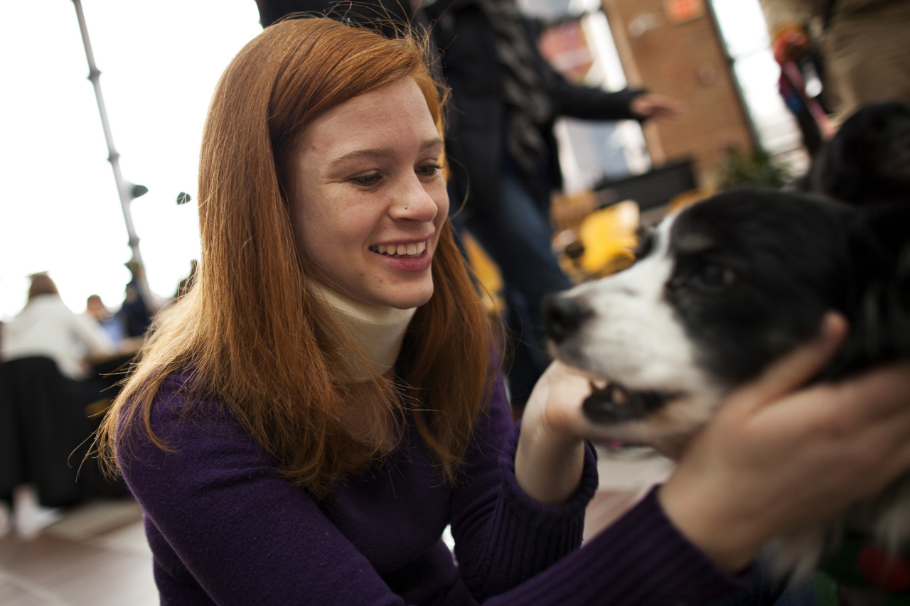 Therapaws of Michigan, a canine-assisted therapy program dedicated to promoting and fostering the human-animal bond in therapeutic and educational settings, visits the Duderstadt Center to help students de-stress during the final examinations period on North Campus in Ann Arbor, MI on December 10, 2012. Photo: Joseph Xu, Michigan Engineering Communications & Marketing www.engin.umich.edu