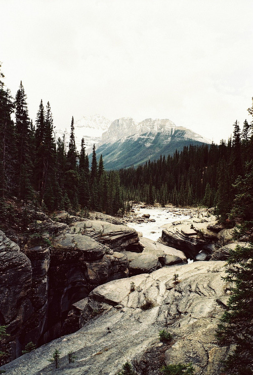 brutalgeneration:  Tumblr on We Heart It - http://weheartit.com/entry/60451161/