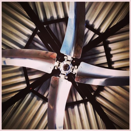 #lookup #gladidid #neat #symmetry #fan