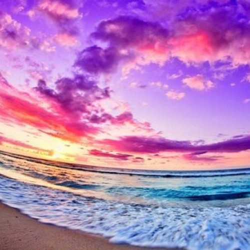 emmabeelu:  #gorgeous #pretty #nature #natural #stunning #color #sun #set #sunsets #beach #dream #ocean #water #sea #distracted #love #lovely #want #need #needthis #amazing #aw #awesome #fancy #fantasy #f4f #fff #like4like #l4l #lfl #s4s #sfs #follow #follow4follow #colorful #wow #woah #crazy