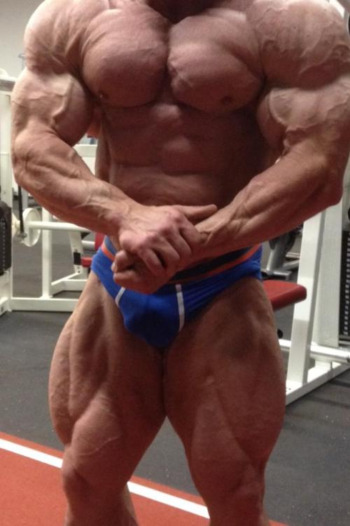 pnobear:😍Mmmmmmm&#8230 Bodybuilder bulge!
