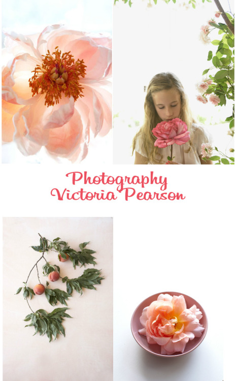 From Vintage Rose Brocante Photography  Victoria Pearson