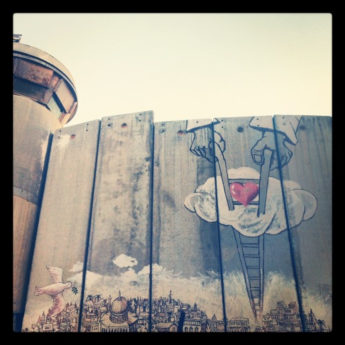 Separation wall art in Bethlehem #Palestine