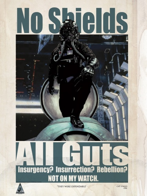 TIE Fighter Pilot Recruiting Poster.