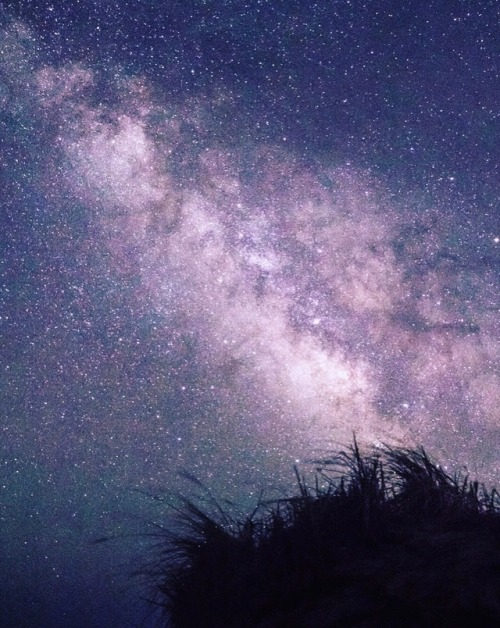 starry sky starry night star gazing stars night photography night night sky milky way galaxy universe magical inspiring inspirational wanderer wanderlust journey adventure original post photographers on tumblr lensblr