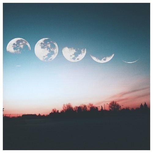 "itsonlyadream16:  ""She was like the moon, part of her was always hidden."""