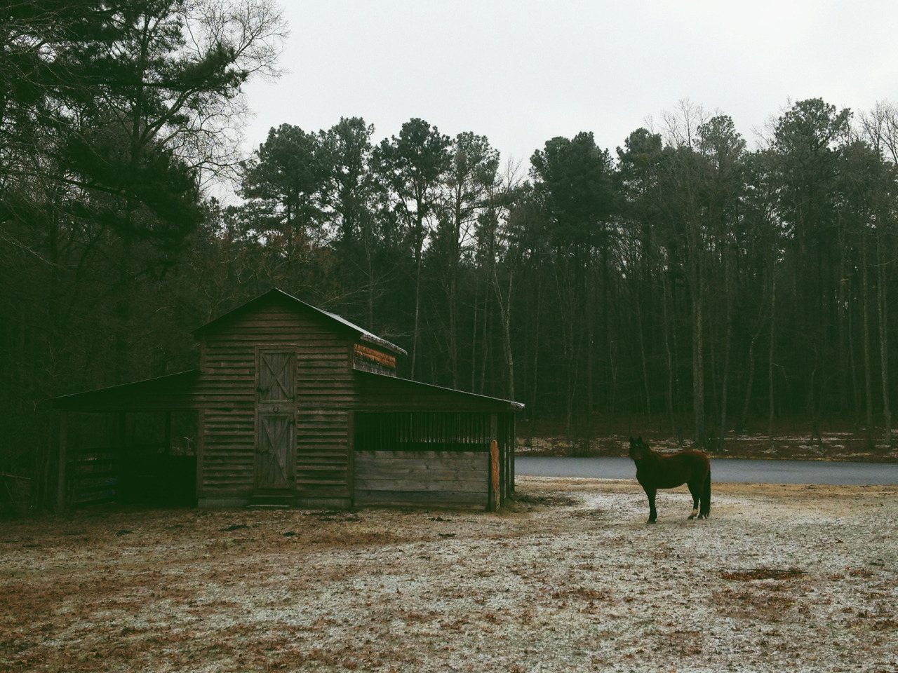 Horse Barn. Chapel Hill, NC, USA. January 2013.