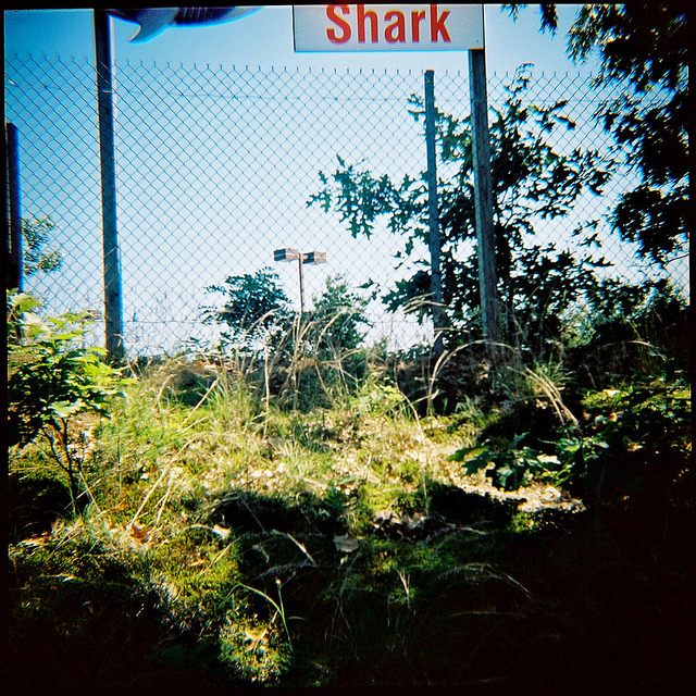 Shark on Flickr.Via Flickr: Salisbury, Mass., June 2012.