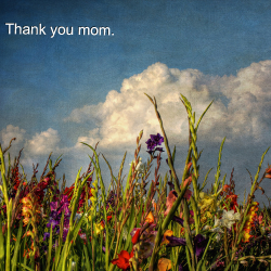 bouquetofdandelions:  Happy Mother's Day! <3
