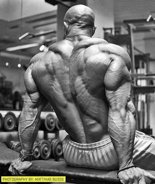 twisted-steel-and-sex-appeal:  truestrength525:  Amazing back   Holy shit!!