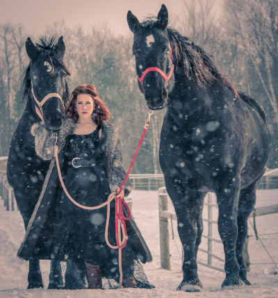 marccphotography:  Winter shoot, -9C & awesome horses.
