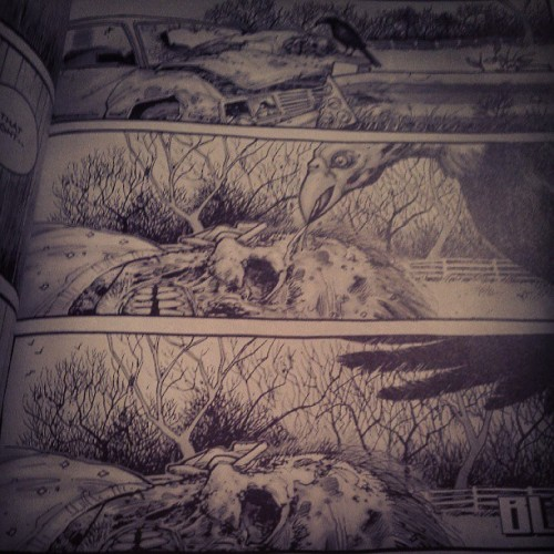Reading the walking dead