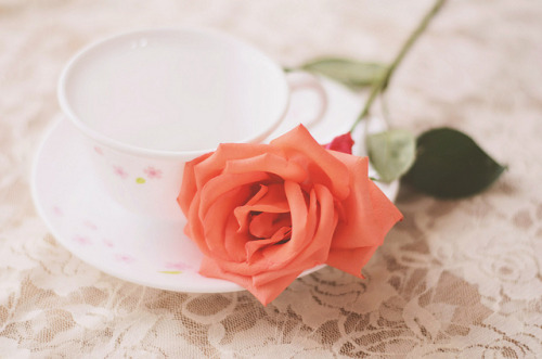 rita-monica:  33/365: Lace x Rose x Teacup by Mandy Faith on Flickr.