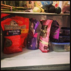 Bottom shelf of my fridge belongs to my furry kids! I stocked up. Freezer wasn't even big enough for everything I got! (at my kitchen)