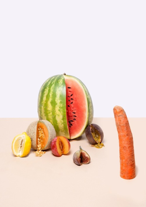 freakyfauna:  Just Fruit by Lauren Hillebrandt.