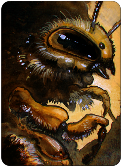 bee portrait done in acrylics and spruced up in photoshop <3