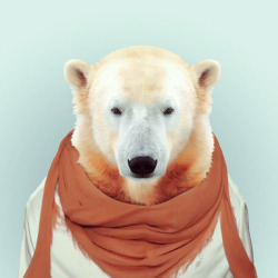 fashion zoo animal  via