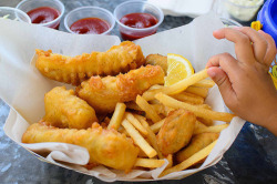 vejiga:  Fish & Chips