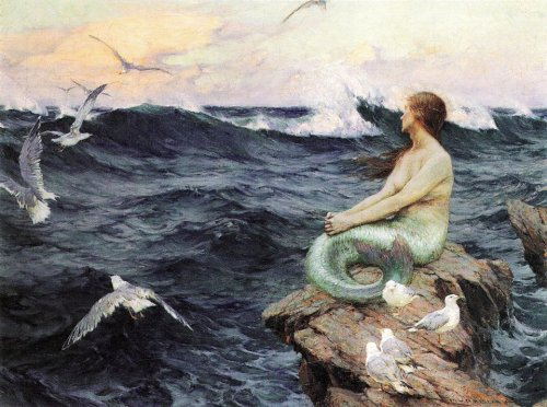 The Mermaid - Charles Murray Padday