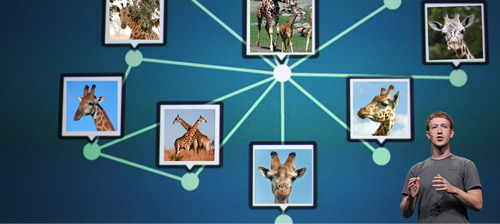 comedycentral:  Facebook introduces Giraffe Search.