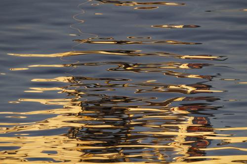 danagel:  Liquid Fire outerbostonia August 25, 2014